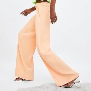 Zara limited edition high waisted pants